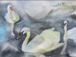 Kensington Gardens Round Pond Series, Part 2, Kensington Swans, 6 of 7
